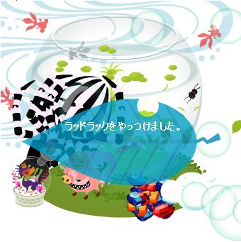 20081106 14:55 スト50~ ソロ.PNG